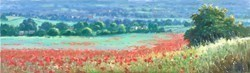 View of a Poppy Field by James Preston -  sized 40x12 inches. Available from Whitewall Galleries